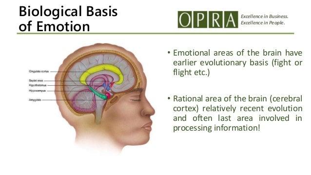 impact of emotional intelligence on job performance pdf