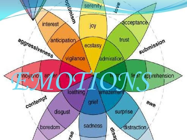 EMOTIONS <br />