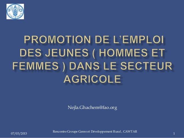 07/03/2013 Rencontre Groupe Genre et Développement Rural , CAWTAR 1 Nejla.Ghachem@fao.org
