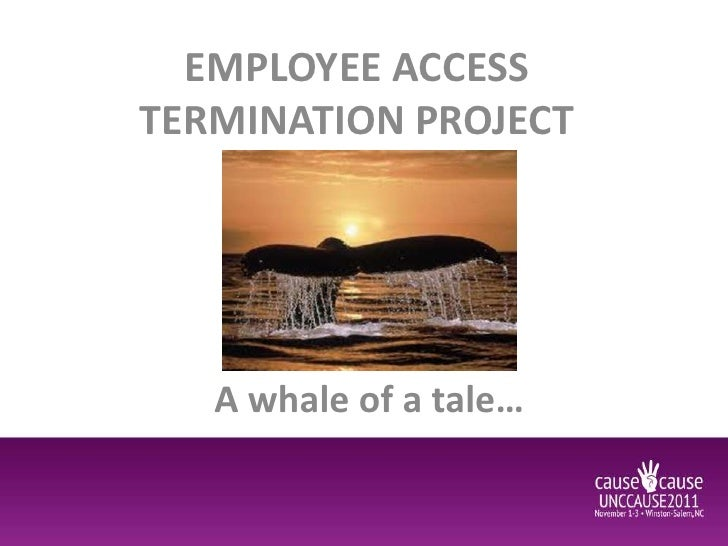 EMPLOYEE ACCESSTERMINATION PROJECT   A whale of a tale…