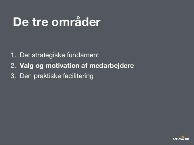 De tre områder 1. Det strategiske fundament 2. Valg og motivation af medarbejdere 3. Den praktiske facilitering