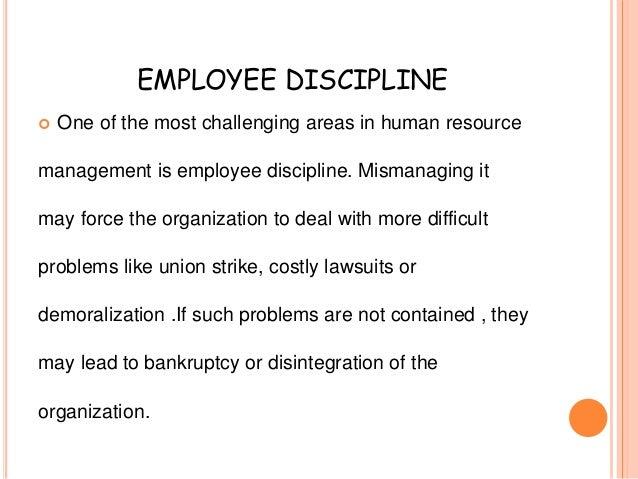 chapter 12 employee discipline