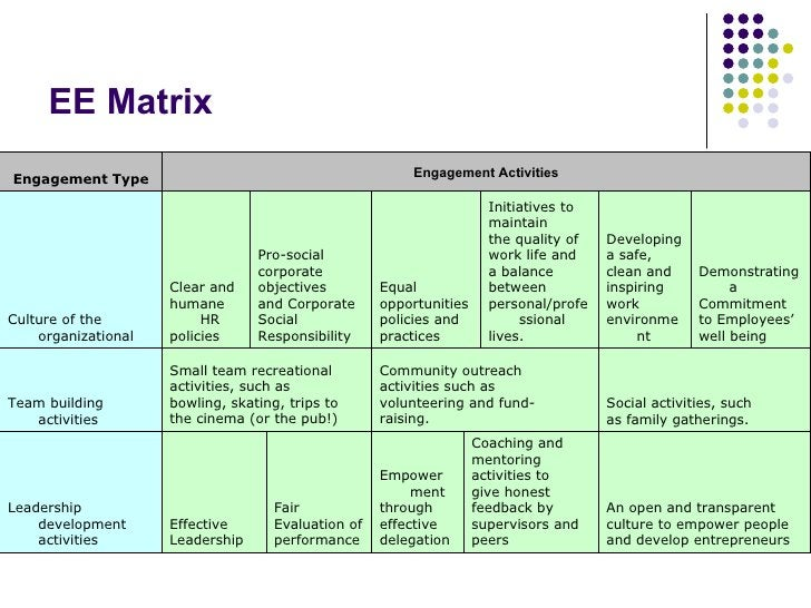 EE Matrix An open and transparent  culture to empower people  and develop entrepreneurs Coaching and  mentoring  activitie...