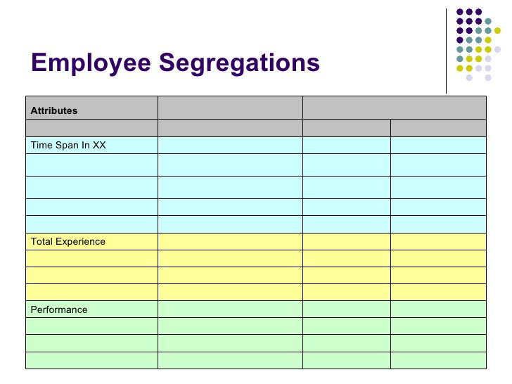 Employee Segregations    Performance    Total Experience     Time Span In XX  Attributes