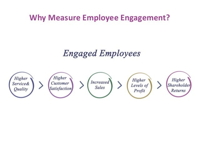 100 Sample Employee Engagement Survey Questions – Employment Engagement Survey Template