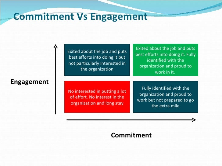 Commitment Vs Involvement: Employee Engagement Strategy