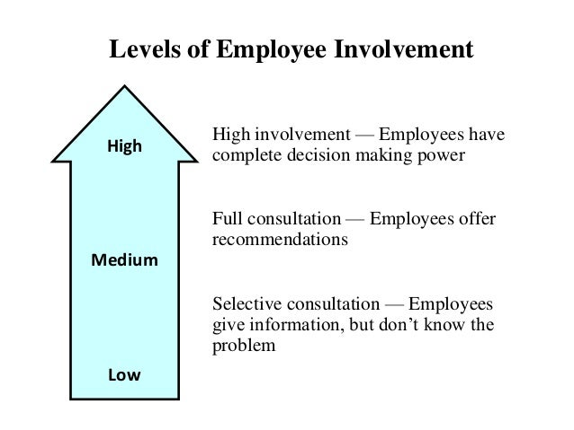 employee involvement in decision making report