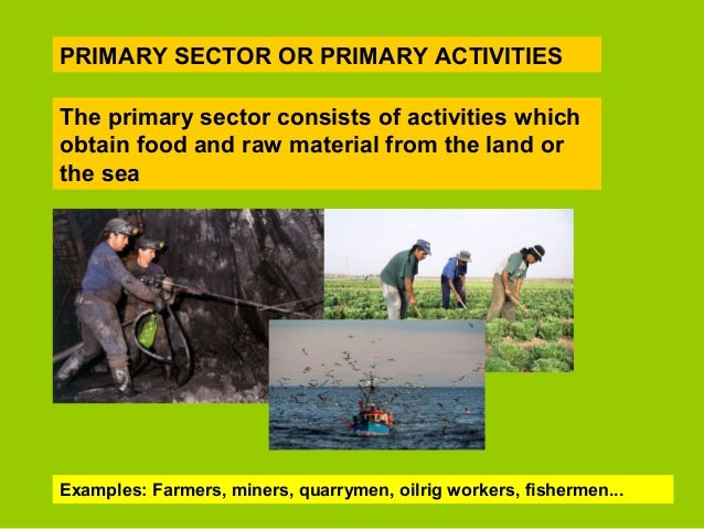 primary sector Free article from wwwlearnmanagement2com about industrial sectors the production of goods and services occurs in one of three industrial sectors primary, secondary and.