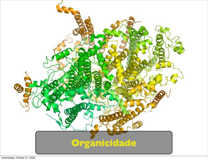 Organicidade Wednesday, October 21, 2009