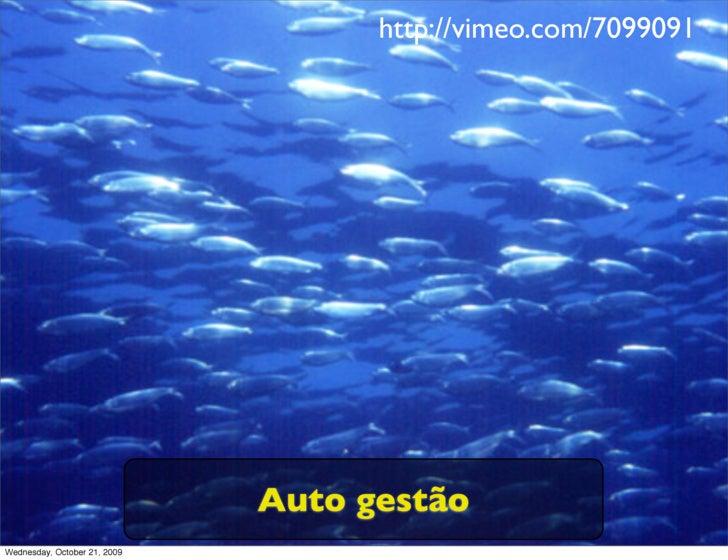 http://vimeo.com/7099091                                   Auto gestão Wednesday, October 21, 2009