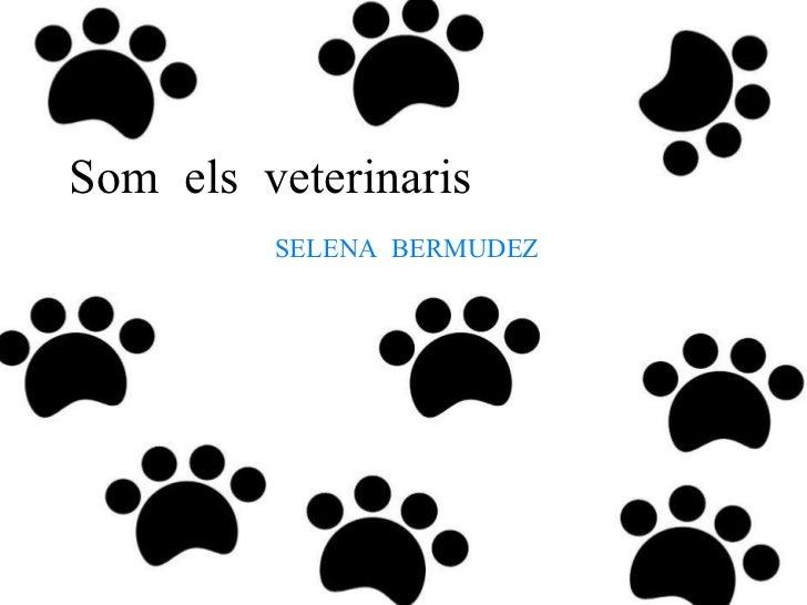 Som  els  veterinaris SELENA  BERMUDEZ