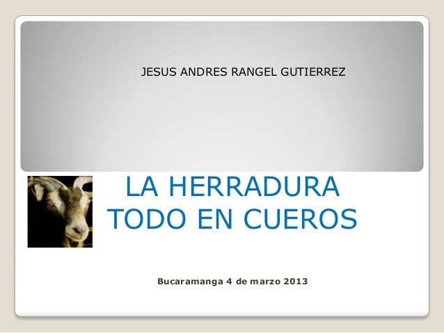 JESUS ANDRES RANGEL GUTIERREZ LA HERRADURATODO EN CUEROS   Bucaramanga 4 de marzo 2013