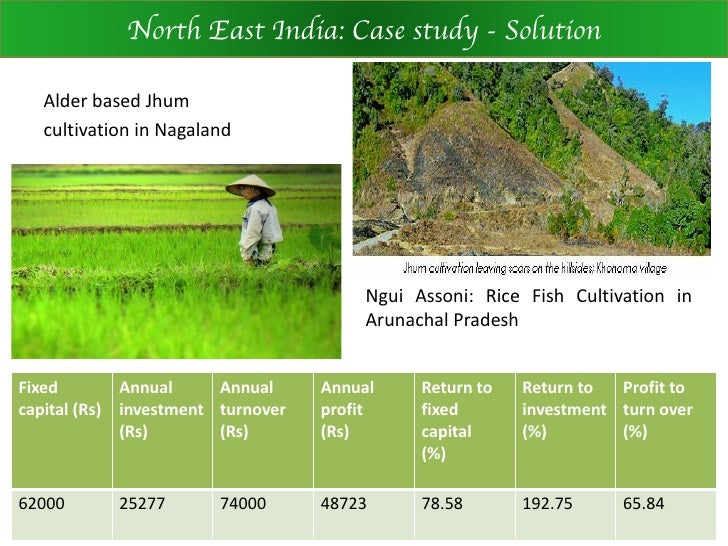 Indian Agriculture Case Study Solution and Analysis of ...