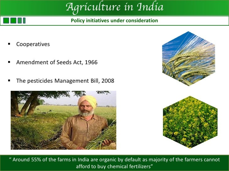 sustainability of agriculture essay