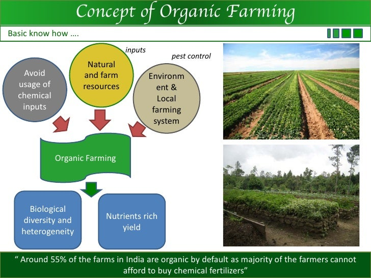 intensive vs organic farming essay Free organic farming papers powerful essays: organic farming vs factory farming - many consumers critical action to support organic farming and organic.