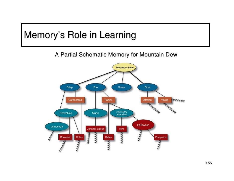 bb chapter nine learning and memory. Black Bedroom Furniture Sets. Home Design Ideas