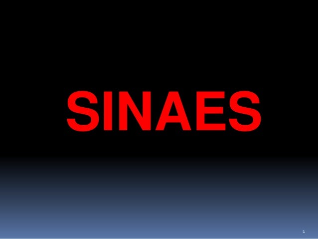 1 SINAES