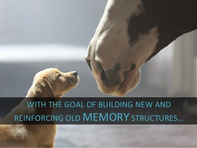 WITH  THE  GOAL  OF  BUILDING  NEW  AND   REINFORCING  OLD  MEMORY  STRUCTURES…