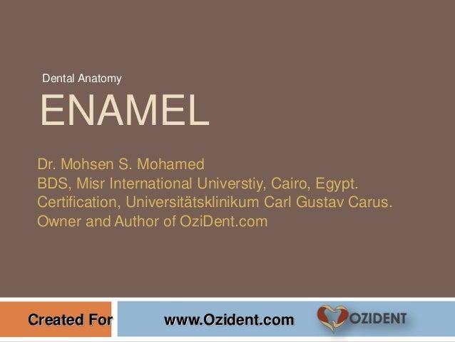 ENAMEL Dr. Mohsen S. Mohamed BDS, Misr International Universtiy, Cairo, Egypt. Certification, Universitätsklinikum Carl Gu...