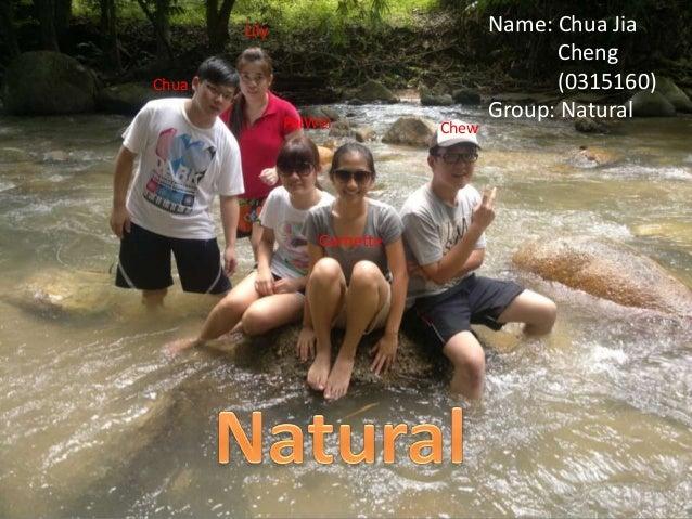 ChuaLilyPeiWeiGarnetteChewName: Chua JiaCheng(0315160)Group: Natural