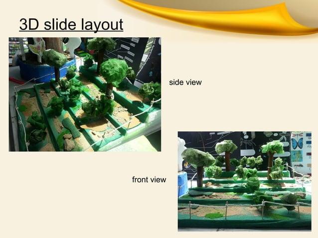 3D slide layoutside viewfront view