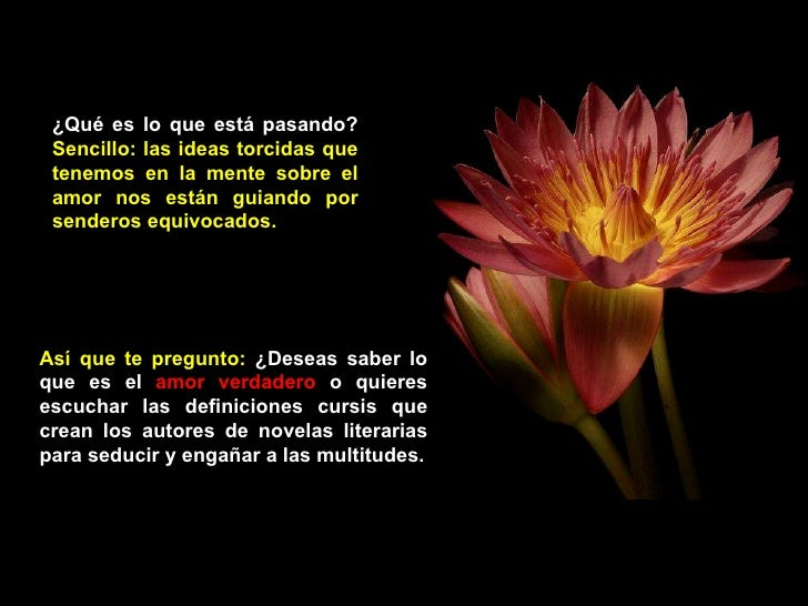 En Busca Del Amor El Amor No Elige Ama