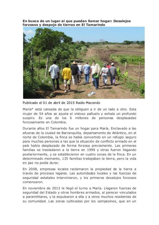 En busca de un lugar al que puedan llamar hogar: Desalojos forzosos y despojo de tierras en El Tamarindo Publicado el 01 d...