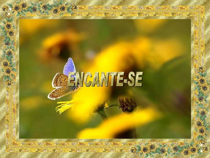 ENCANTE-SE