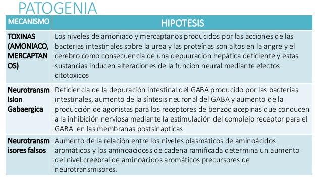 PATOGENIA MECANISMO HIPOTESIS TOXINAS (AMONIACO, MERCAPTAN OS) Los niveles de amoniaco y mercaptanos producidos por las ac...