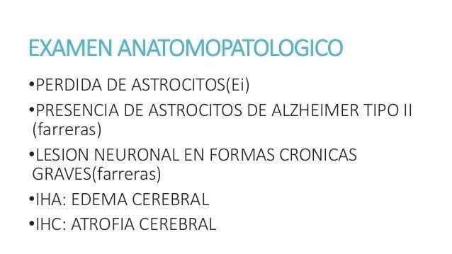 ESTADIOS CLINICOS DE LA ENCEFALOPATIA H. ESTADIO CLINICO FUNCION INTELECTUAL FUNCION NEUROMUSCULAR Subclinico Pruebas norm...