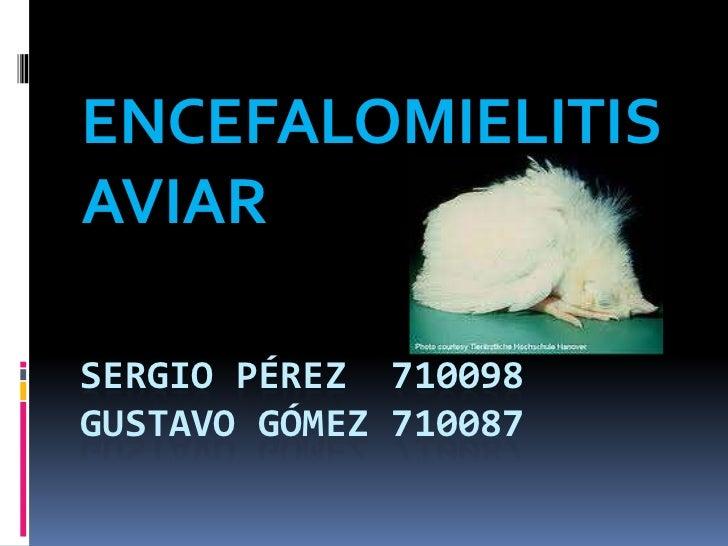 ENCEFALOMIELITISAVIARSERGIO PÉREZ 710098GUSTAVO GÓMEZ 710087