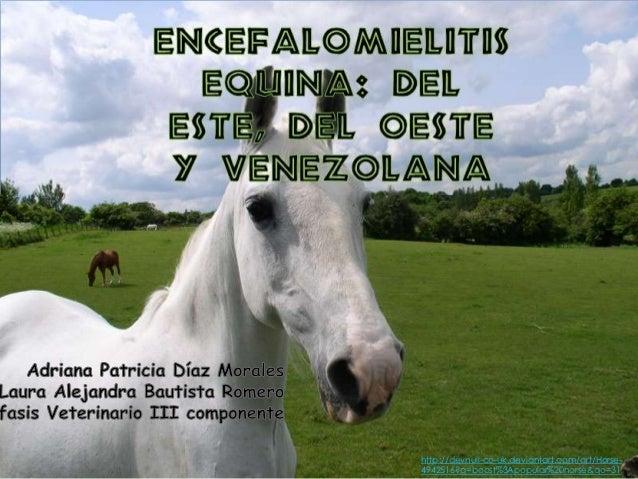 http://devnull-co-uk.deviantart.com/art/Horse-4942516?q=boost%3Apopular%20horse&qo=31