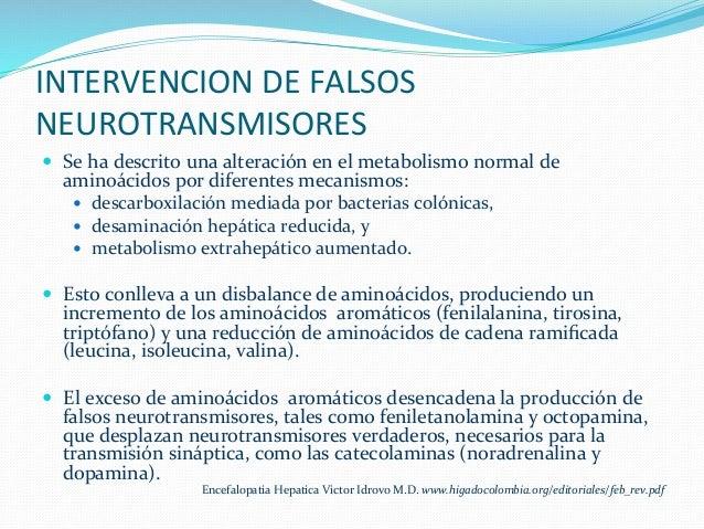 INTERVENCION  DE  FALSOS   NEUROTRANSMISORES   — Se  ha  descrito  una  alteración  en  el  metabo...