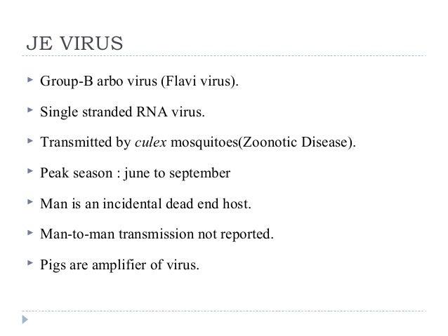 JE VIRUS  Group-B arbo virus (Flavi virus).  Single stranded RNA virus.  Transmitted by culex mosquitoes(Zoonotic Disea...