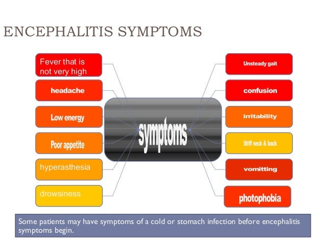 ENCEPHALITIS SYMPTOMS Fever that is not very high hyperasthesia drowsiness Some patients may have symptoms of a cold or st...