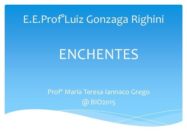 E.E.Prof°Luiz Gonzaga Righini ENCHENTES Profª Maria Teresa Iannaco Grego @ BIO2015