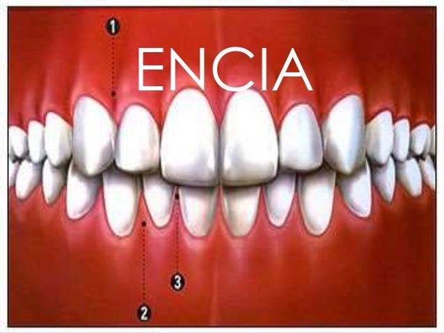 ENCIA   ENCIA