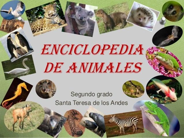 ENCICLOPEDIA DE ANIMALES Segundo grado Santa Teresa de los Andes
