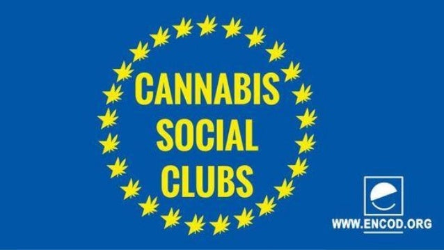 Freedom to farm Campage voor zelfbeschikkingsrecht Vrije en Veilige Cultivatie CATEGORY AMOUNT IN € Web page creation 2.0...