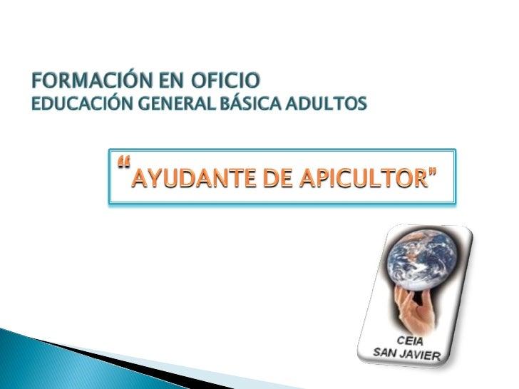 """Oficio """"Ayudante de Apicultor."""" Slide 1"""