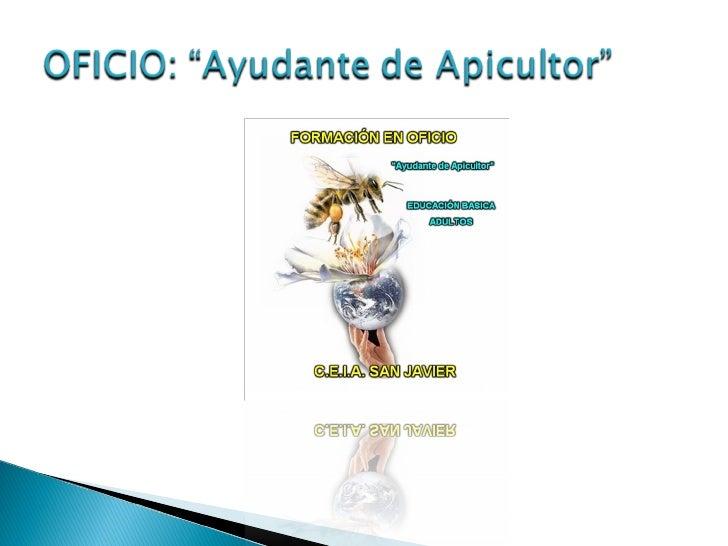"""Oficio """"Ayudante de Apicultor."""" Slide 2"""