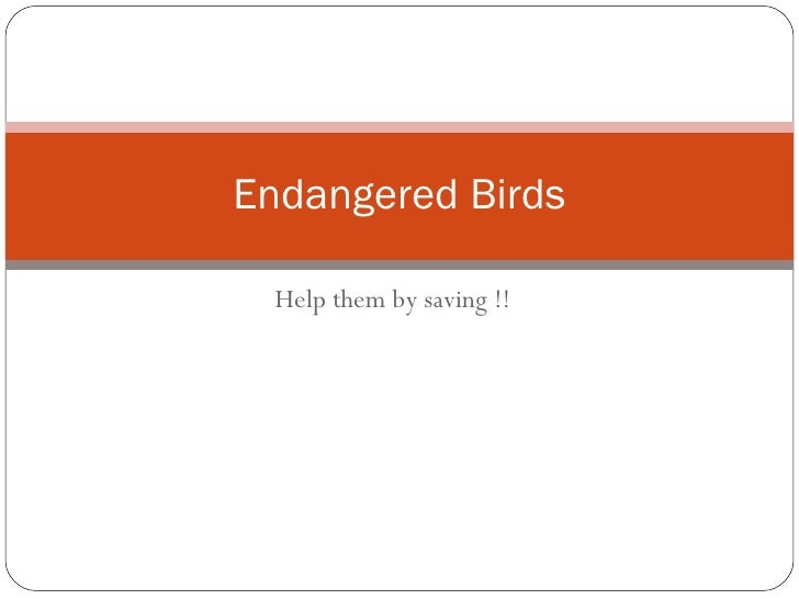 Help them by saving !! Endangered Birds