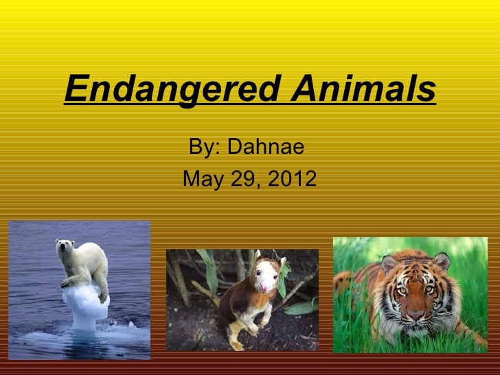 Endangered Animals     By: Dahnae     May 29, 2012