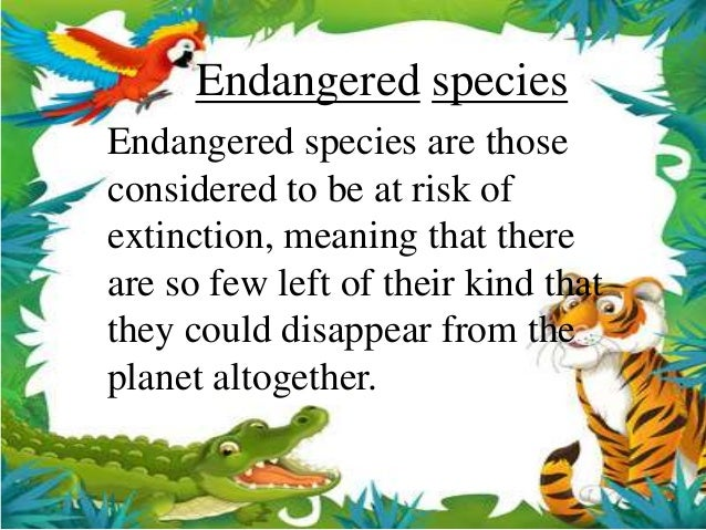 why are the nigerian rainforests becoming endangered