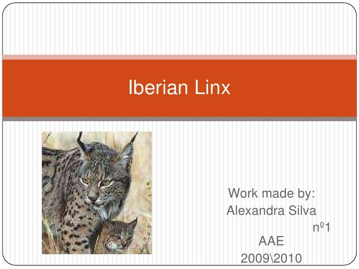 Workmadeby: <br />Alexandra Silva<br />                            nº1 AAE<br />20092010 <br />IberianLinx<br />