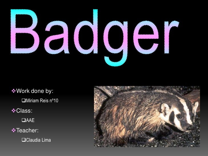Badger<br /><ul><li>Work done by: