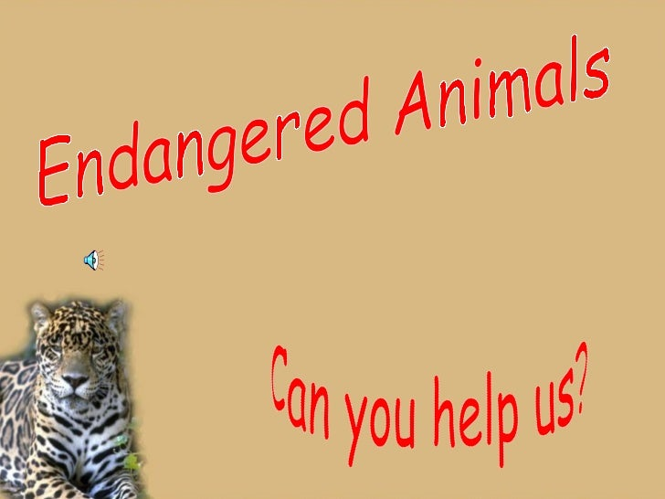 Endangered Animals Can you help us?