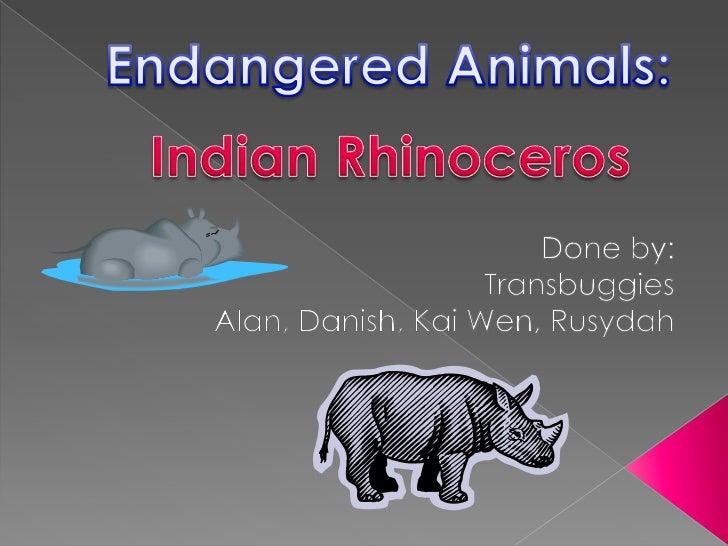 Endangered Animals:<br />Indian Rhinoceros<br />Done by:<br />Transbuggies<br />Alan, Danish, Kai Wen, Rusydah<br />