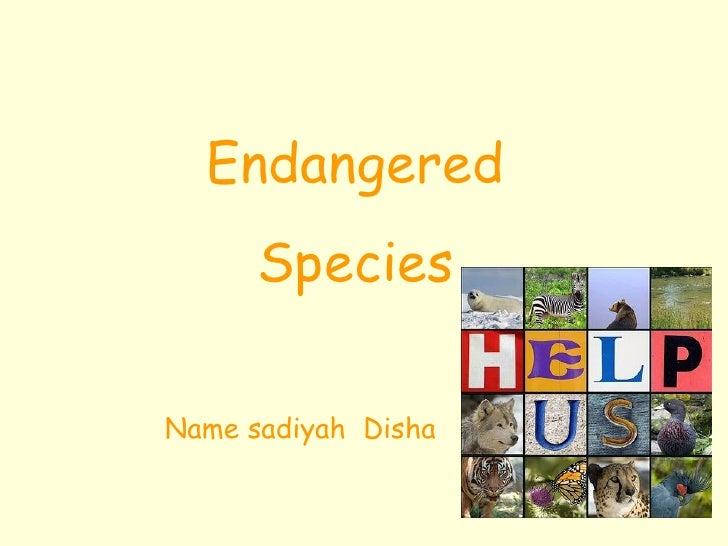 Endangered Species Name sadiyah  Disha