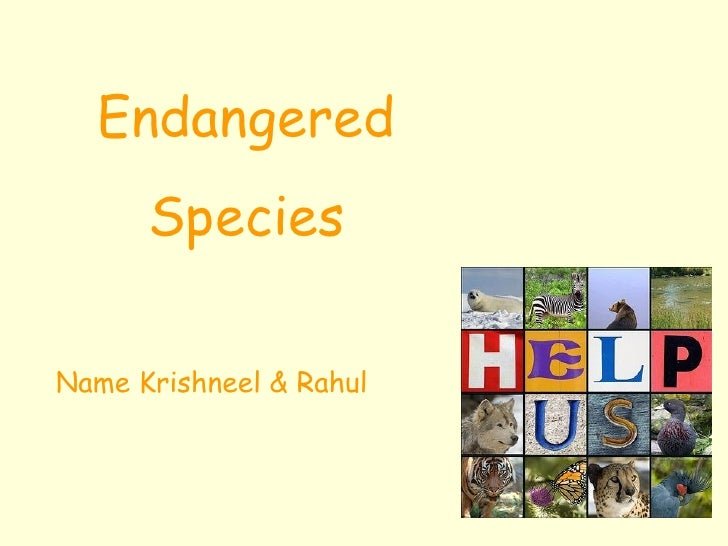 Endangered Species Name Krishneel & Rahul